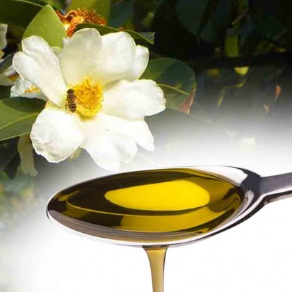Camellia Oil Refined 500ml 精致山茶花油 苦茶油 Cold Pressed/ Tea Seed Oil/ Tsubaki Oil / DIY Soap Making Oil/ Hair Care Oil