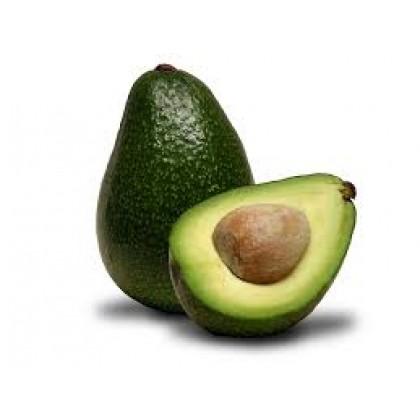 Avocado Oil Refined 500ml 精致酪梨油
